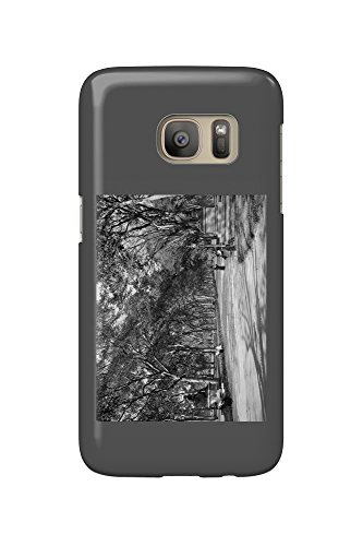 The Mall in Central Park in New York City Photograph (Galaxy S7 Cell Phone Case, Slim Barely - Newyork Malls In