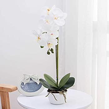 LIVILAN Silk Phalaenopsis Flower Arrangement Artificial Orchid Flowers with White Vase, Wedding Party Dinning Table Centerpiece Decor, White