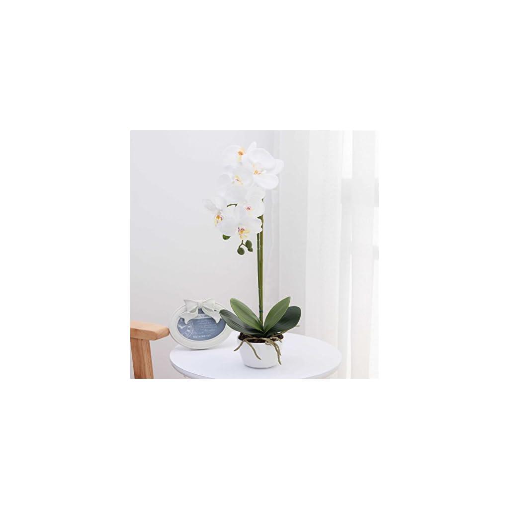 Livilan-Silk-Flower-Arrangement-White