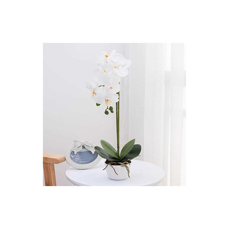 "silk flower arrangements orchid silk phalaenopsis flower arrangement artificial orchid flowers with white vase, wedding party dining table centerpiece decor, white, height 17"""