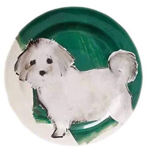 Ceramic Collectible Teddy (Sally Muir Anthropologie Dog-a-Day Stoneware Dessert Plate - White Dog Maltipoo)