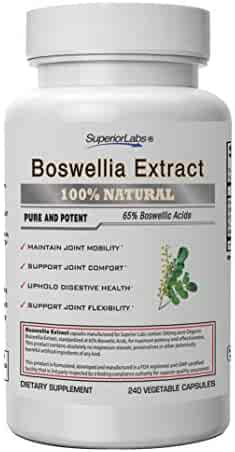 Superior Labs Boswellia Extract - Pure NonGMO Boswellic 65% Acids w/Bioperine Superior Absorption Zero Synthetic Additives - Powerful Formula Joint, Knees, Hips, Migraine, Immune, 500mg SVG, 240 Veg