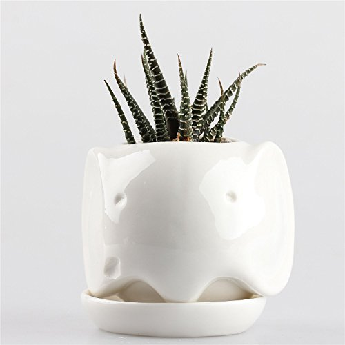 Cute Elephant Ceramic Succulent Plant Flower Pot Flowerpot Planter Milk White Small with Tray