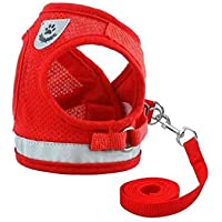 Dog and Cat Universal Harness with Leash Set, Escape Proof Cat Harnesses - Adjustable Reflective Soft Mesh Corduroy Dog…