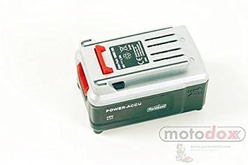 Lidl Flora Best batería recargable para Flora Best batería cortabordes frt-401 18 a y frt-401 18 A1 - Batería de repuesto para su batería cortabordes: ...