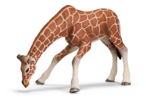 Schleich Female Giraffe Drinking ()