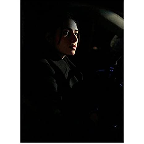Person of Interest Sarah Shahi as Sameen Shaw in Driver's Seat 8 x 10 inch  photo