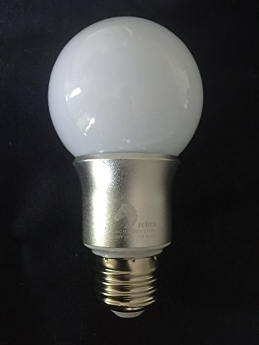 G20 Globe ((6 Pack) LED Globe Vanity Light Bulb A19 / G20 Globe. Warm White 2700k. 6 Watts 580 Lumens 100-240v. 50,000 Hour. Silver Base. Energy Efficient.)