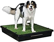 PetSafe Pet Loo Portable Indoor/Outdoor Dog Potty, Alternative to Puppy Pads, Large