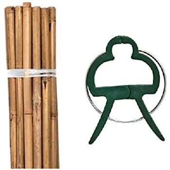 50 Natural Bamboo Garden Stakes - 4 ft Tall with 50 Small Plant Clips