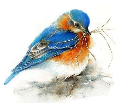 Watercolor Artist Paintings