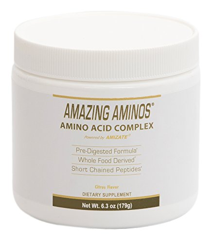 AMAZING AMINO ACIDS | Pre-digested Amino Acids | 1 Month Supply | Whole Food Derived | Natural Citrus Flavored Powder Mix (Acids Predigested Amino)