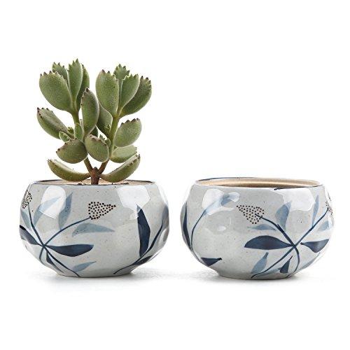 T4U Ceramic Japanese succulent Container