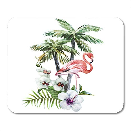 Semtomn Gaming Mouse Pad Floral Flamingos Watercolor Bird Jungle Hibiscus Isolated Painting Tropical Abstract 9.5