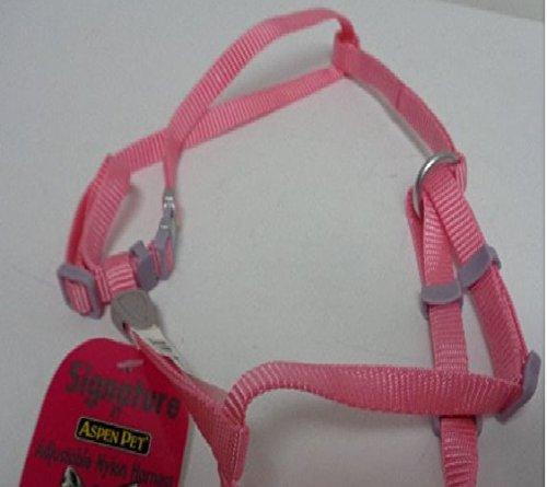 Signature Medium and Large cat adjustable nylon harness (Aspen Pet Nylon Cat Collar)