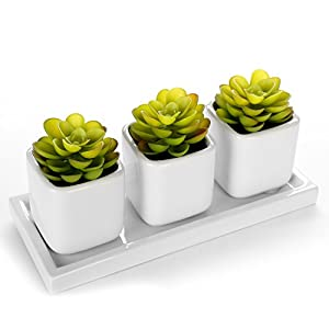 Set of 3 Green Artifical Succulent Plants in White Modern Cube Ceramic Vases/Pots & Display Tray 9