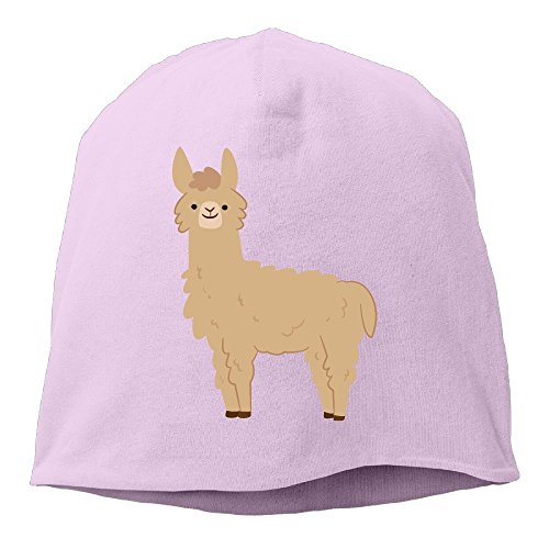 DMN Fashion Solid Color Cute Alpaca Wool Hat For Unisex Pink One Size