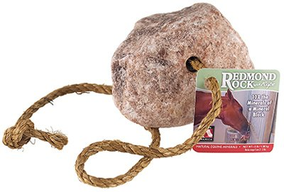 Redmond Rock On Rope (Pack of 8) by Redmond Minerals, Inc