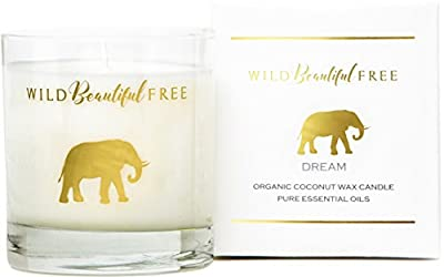 Wild Beautiful Free Organic Coconut Wax Aromatherapy Candle (Vegan, Cruelty-Free, Cotton Wicks, Made in the USA with Essential Oils)