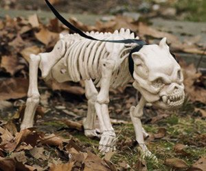 life size skeleton dog halloween prop decoration