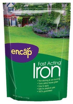 Ast Soil Conditioner (Encap Iron Plus Ast Soil Conditioner Bagged 2.5 Lb.)