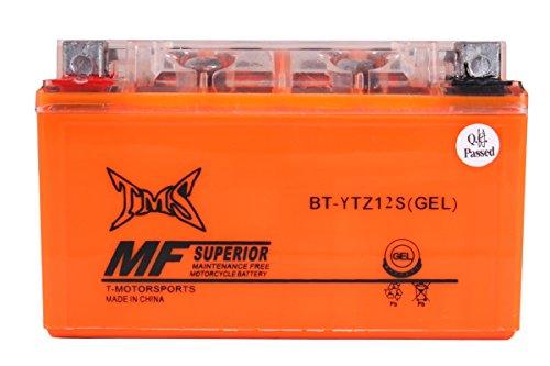 TMS Gel Ytz12s Battery for Honda Nss250 Ps250 Fsc600 Reflex Big Ruckus Silver Wing