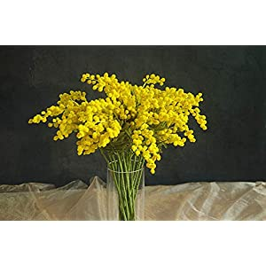 ShineBear 20 PCS Australia Acacia Small Style Yellow Mimosa Pudica Spray Artificial Flower Wedding Flower Party Event Decor - (Color: 20 Pieces Yellow, Size: Total 57cm) 18