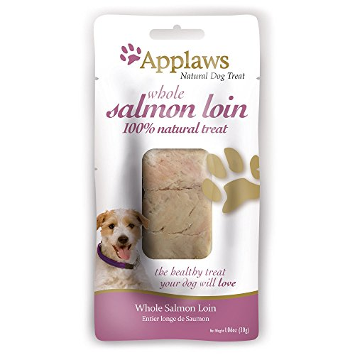 Applaws Whole Salmon Loin Dog Treat, 1.06 oz