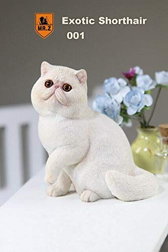 VIDANL 1:6 Scale Figure Accessories Shorthair Cat for 12
