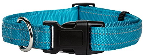 Petmate Padded Reflective Adjustable Collar - Teal - .38 x 8-12 inch