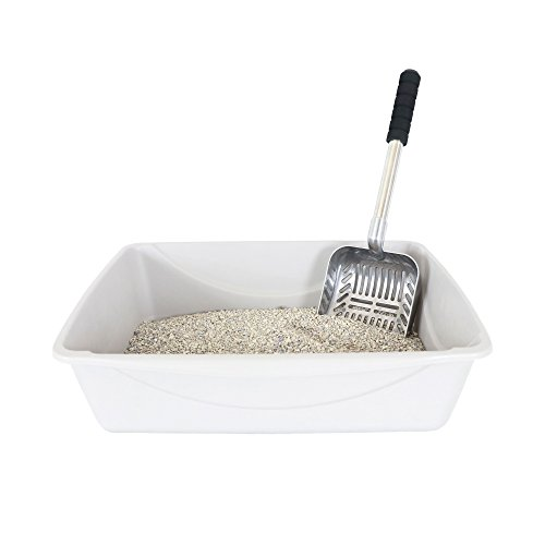 Brask Pet Cat Litter Scoop - Large Sized 2 in 1 Sifter and Scoop - Long Handled Litter Box Scooper - Aluminum Metal with Soft Grip Handle