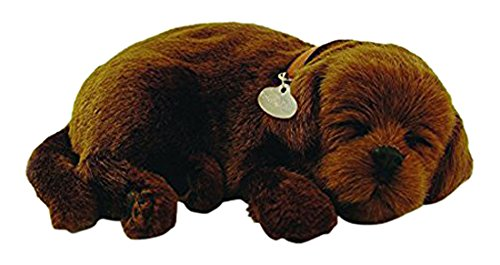 Perfect Petzzz Chocolate Lab Plush product image