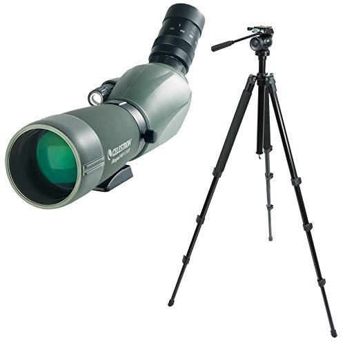 Celestron Regal M2 65ED Spotting Scope with TrailSeeker Tripod by Celestron