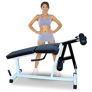 Deltech Fitness Leg Extension/Leg Curl Machine