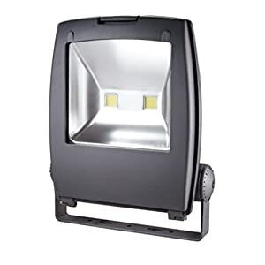 Zesol 80W Warm White LED Flood light Waterproof Outdoor Lights Black Case