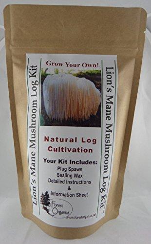 Forest Organics Lion's Mane Mushroom Growing Log Kit