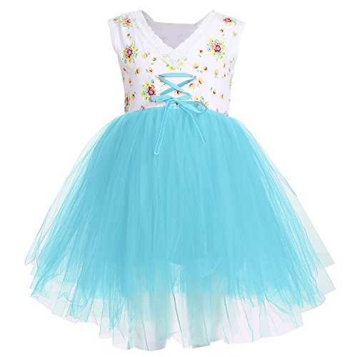 Arshiner Little Girls Sleeveless Tutu Party Princess Dress,Blue,110(Age for 4-5Y) for $<!--$17.99-->