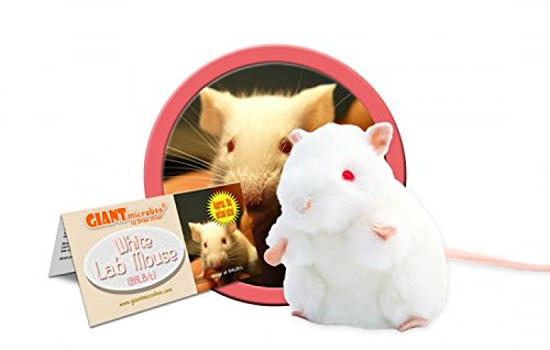 White Mouse Plush - 1