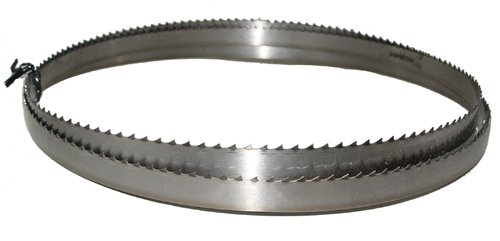 Magnate M77.5T58T3 Meat Bandsaw Blade, 77-1/2
