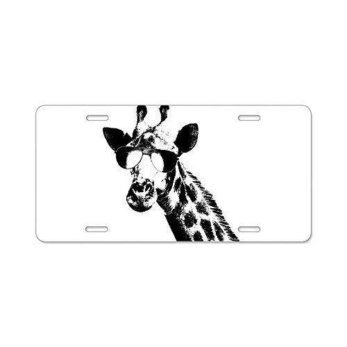 Design Aluminum Metal License Plate Frame Car Tag Holder