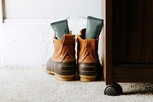 Buy boot deodorizer