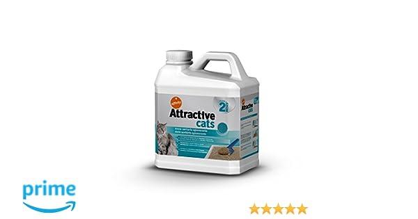 Affinity Attractive Arena Sanitaria Aglomerante para Gato 6 kg: Amazon.es: Amazon Pantry