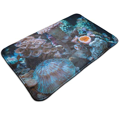 - Tuoneng Corals Graphic,Bath Mat Indoor Outdoor,Entrance Rug Floor Mats Square 19.5W X 31.5L Inches