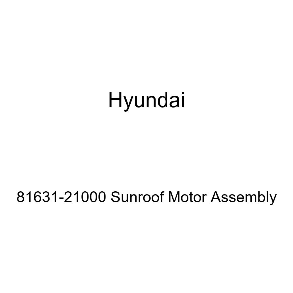 Genuine Hyundai 81631-21000 Sunroof Motor Assembly