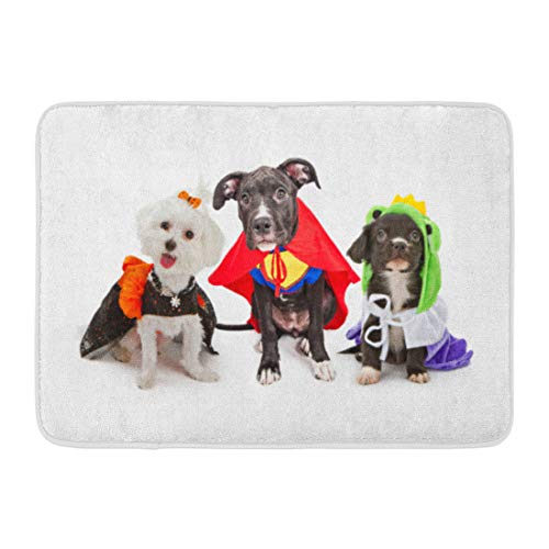 Emvency Doormats Bath Rugs Outdoor/Indoor Door Mat Three Cute Little Puppy Dogs Dressed Up in Halloween Costumes Including Witch and Frog Prince Bathroom Decor Rug Bath Mat 16