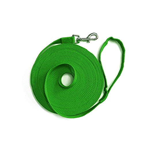 Downtown Pet Supply Dog Puppy Obedience Recall Training Agility Lead - Great for Training, Play, Camping, or Backyard (15ft, 20ft, 30ft, 50ft, 75ft, 100ft, 150ft, 200ft)