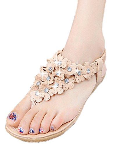 Zeagoo Women Flower Beading T-strap Flip-flop Shoes Flats Sandals (US 6, Pink Rhinestone)