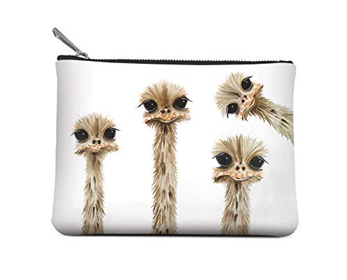 Studio Oh! Small Zippered Pouch Available in 6 Designs, Rachel Brown Ostrich Family Reunion