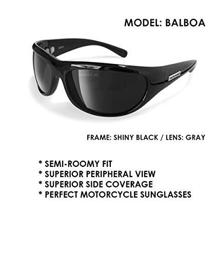 Newport Polarized Balboa Sunglasses - Horseback Riding Sunglasses