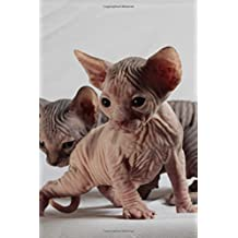 "Sphinx Cat Journal ""Must Have Landed on the Wrong Planet. Again."": 150 page lined notebook/diary"